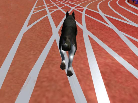 Super Dog Racing Champions screenshot 6