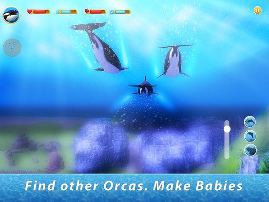 Orca Family Simulator Full screenshot 6