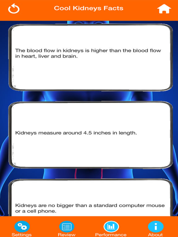 Human Body Parts : Kidneys Quiz screenshot 9