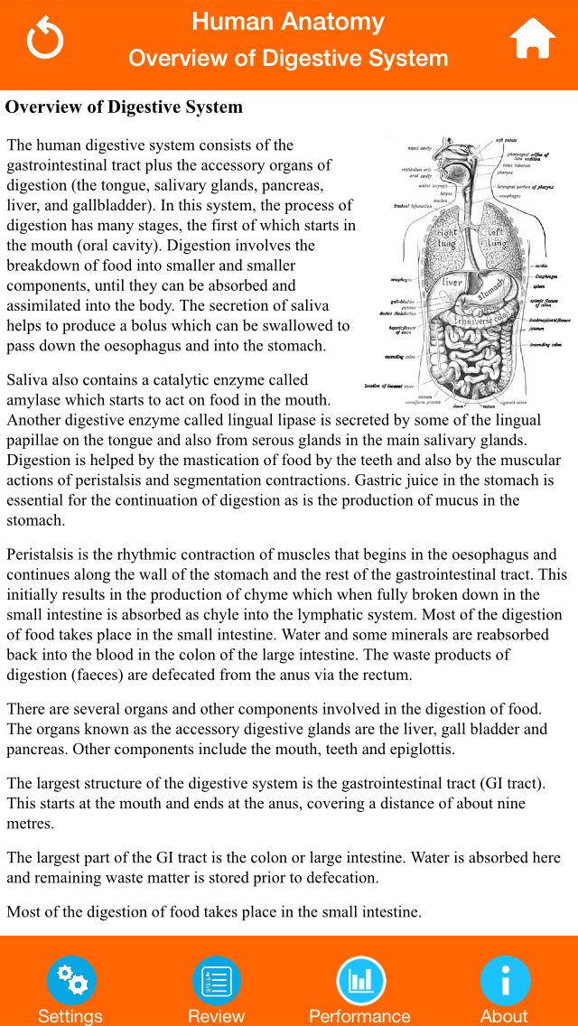 Anatomy : Digestive System screenshot 5