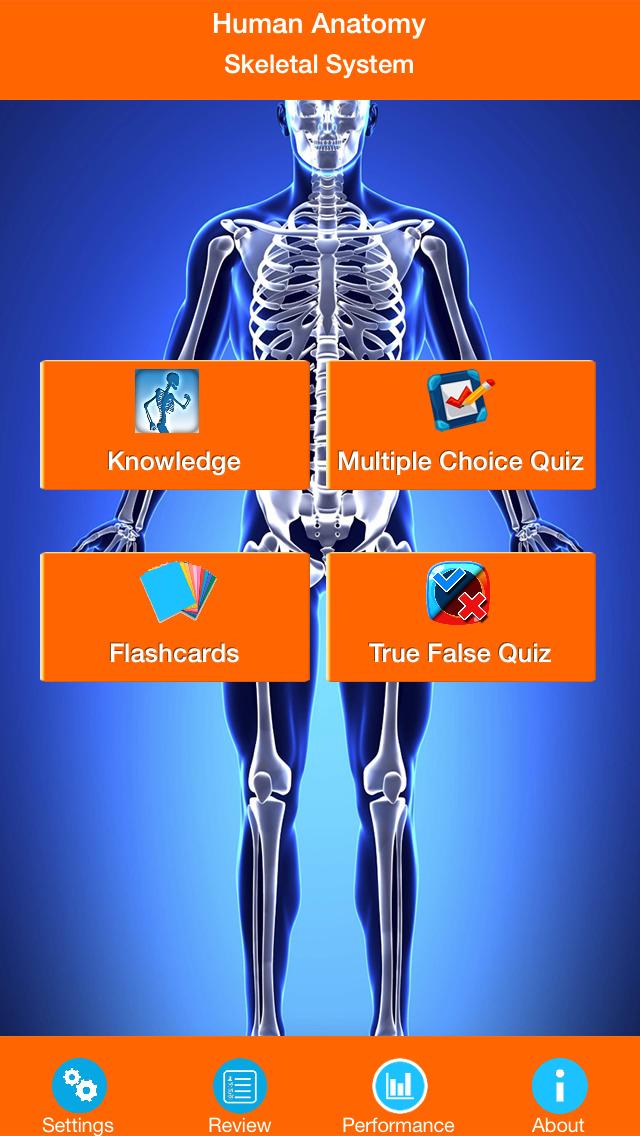 Anatomy - Skeletal System screenshot 1