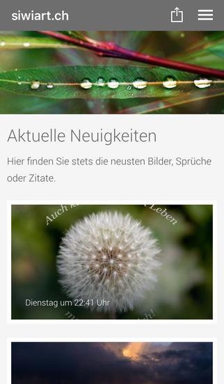 siwiart.ch by Silvio Wirth screenshot 1