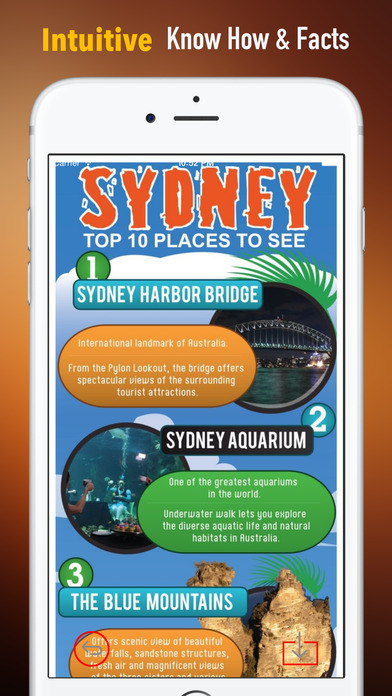 Sydney Travel:Raiders,Guide and Diet screenshot 1