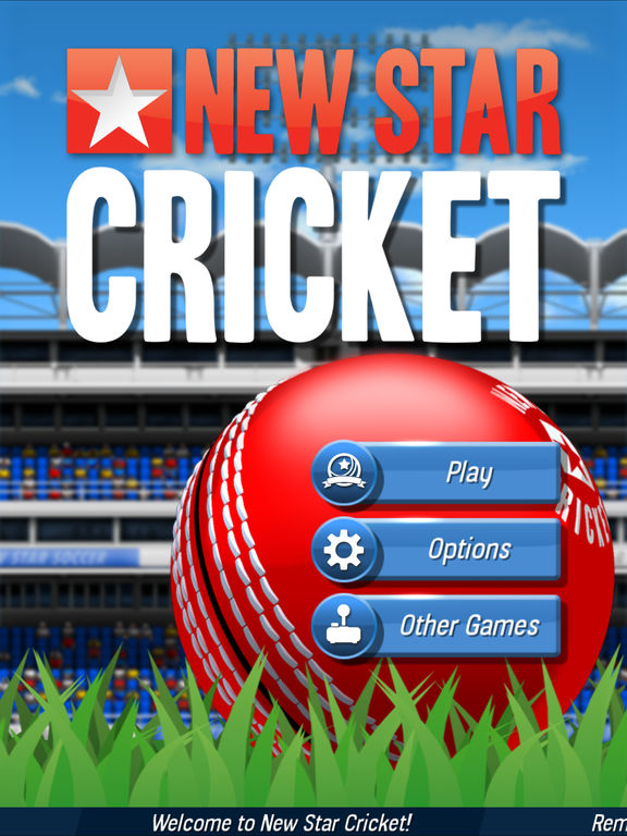 New Star Cricket screenshot 6