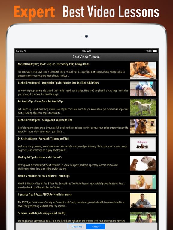 How to Keep Your Pet Healthy:Foods,Exercises and Tips screenshot 7