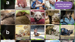 ABC ZooBorns screenshot 2