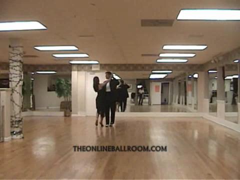 Ballroom Dancing For Beginners & Intermediates screenshot 8