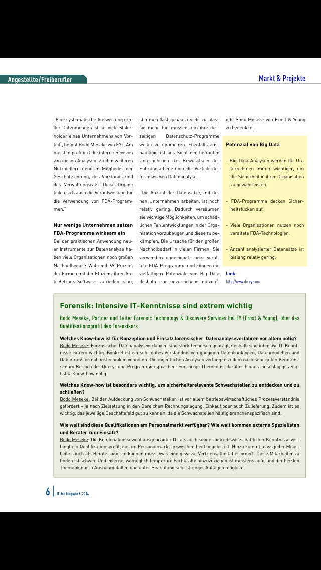 IT Job Magazin screenshot 5