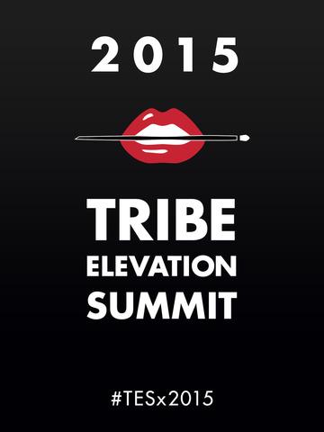 Tribe Elevation Summit 2015 screenshot 3