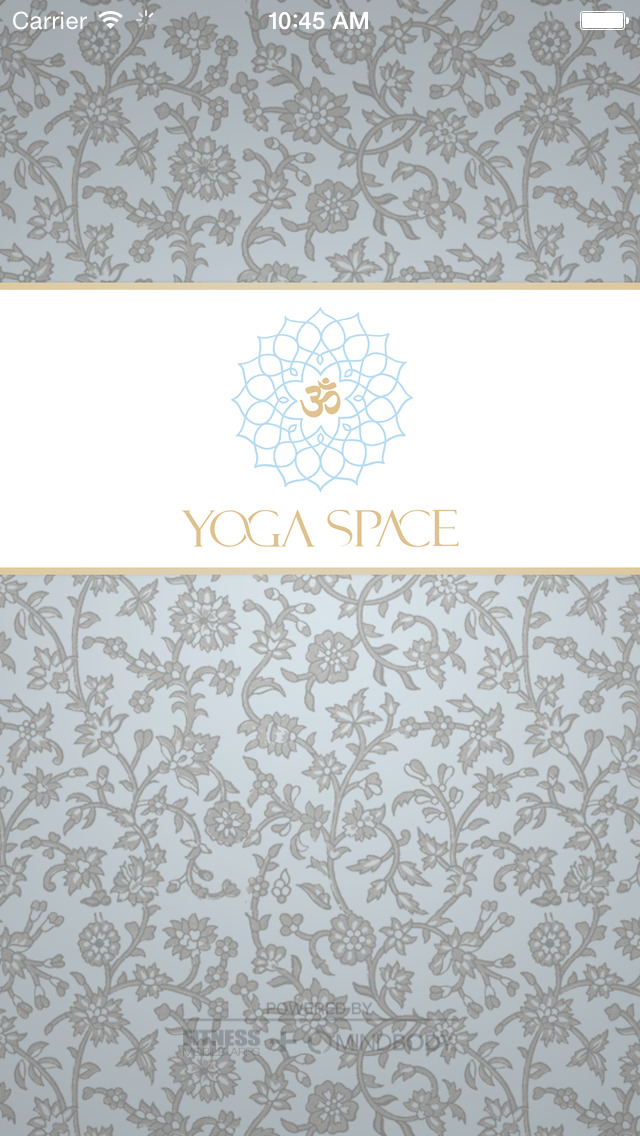 Yoga Space Moscow image #1