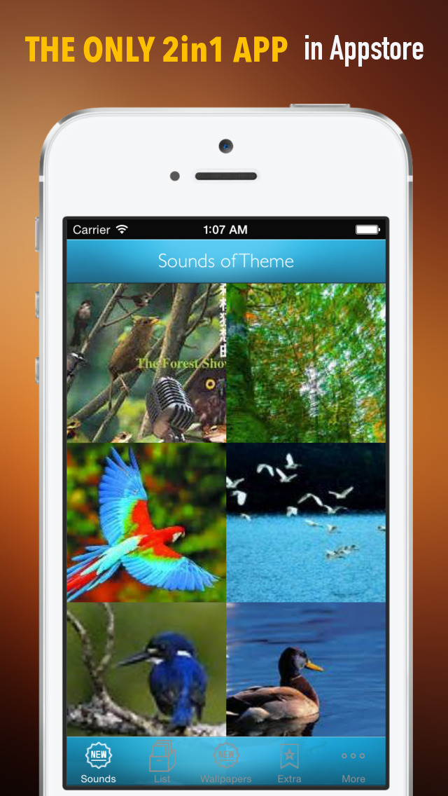 Nature Sounds Ringtones and Wallpapers: Theme your Phone to be back to the Nature screenshot 1
