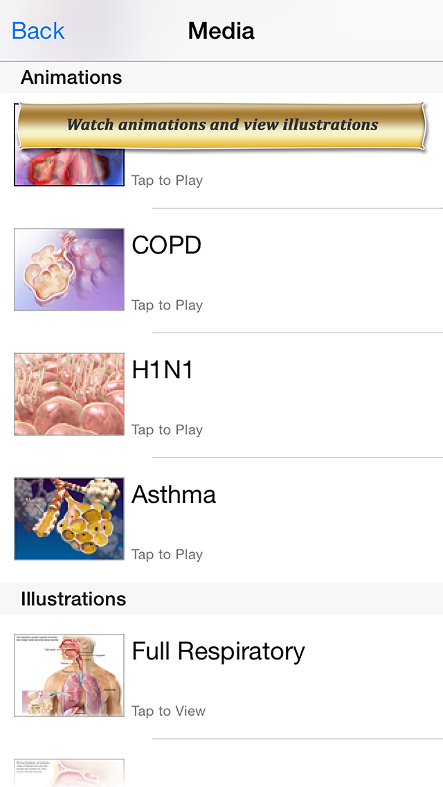 Respiratory Anatomy Atlas: Essential Reference for Students and Healthcare Professionals screenshot 4
