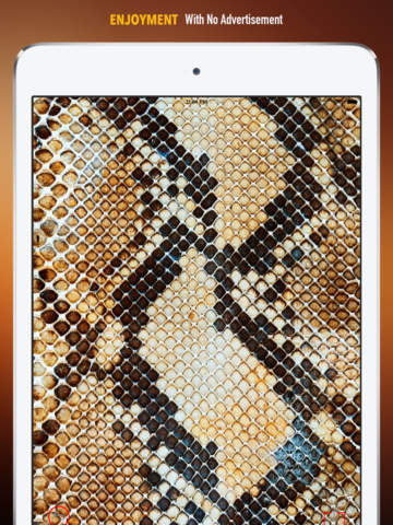 Snake Print Wallpapers HD: Quotes Backgrounds Creator with Best Designs and Patterns screenshot 7