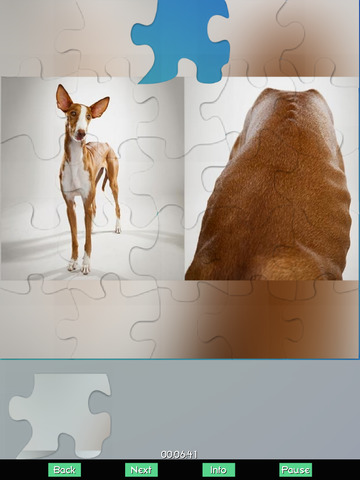 Dogs- Jigsaw Puzzles screenshot 6