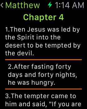 NIV Bible (Audio & Book) screenshot 13