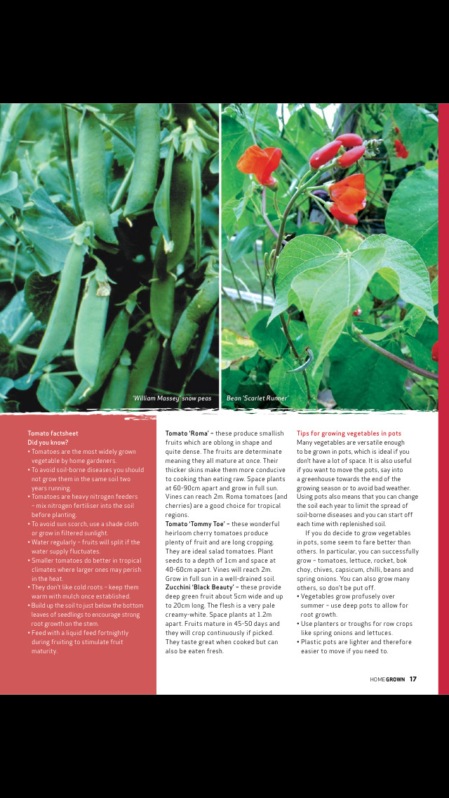 Home Grown Magazine screenshot 5