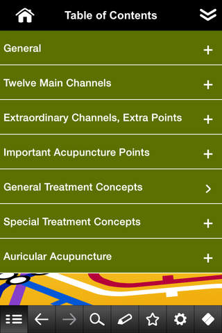 Acupuncture pocket - náhled