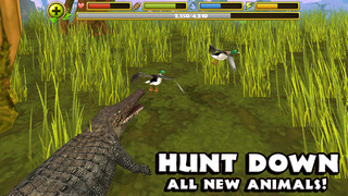 Wildlife Simulator: Crocodile screenshot 5