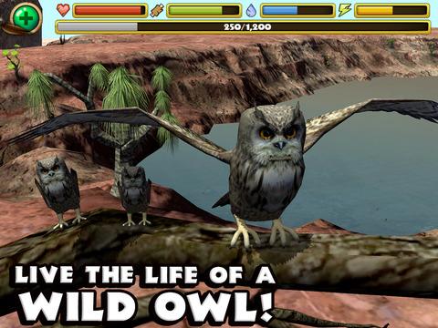 Owl Simulator screenshot 6