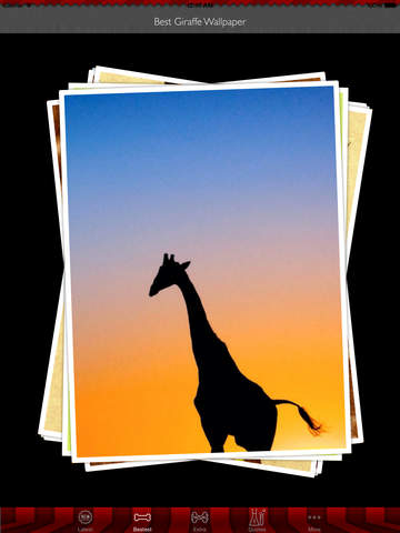 Best HD Giraffe Art Wallpapers for iOS 8 Backgrounds: Animal Theme Pictures Collection screenshot 9