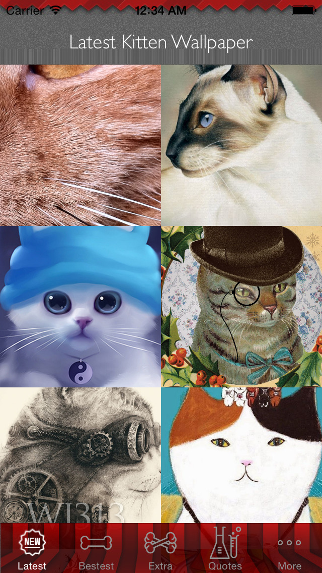 Best HD Kitten Art Wallpapers for iOS 8 Backgrounds: Animal Theme Pictures Collection screenshot 1
