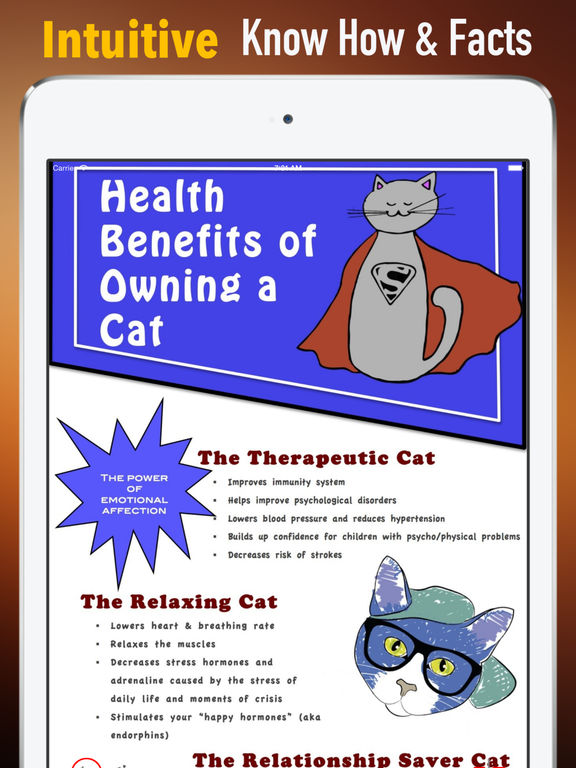 Health Benefits of Owning a Cat:Positive Effects and Guide screenshot 5