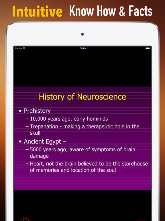 Neuroscience Glossary: Cheatsheet with Study Guide screenshot 6