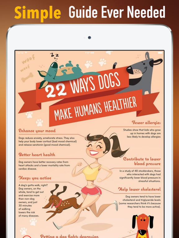 Health Benefits of Owning a Dog:Positive Effects and Guide screenshot 7