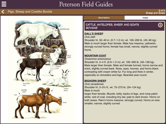 Peterson Mammals Field Guide screenshot 9