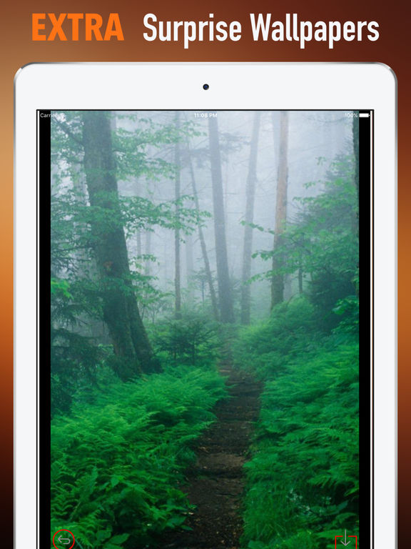 The Appalachian Trail Wallpapers HD-Art Pictures screenshot 8