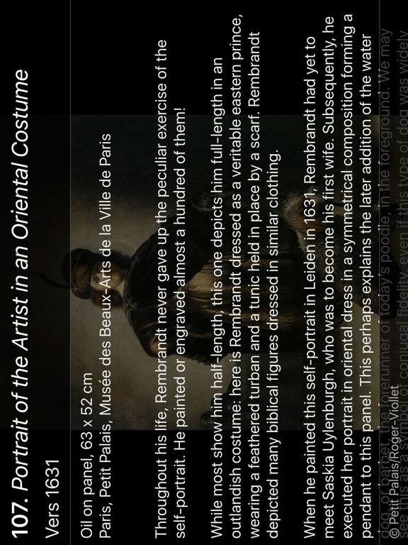 Rembrandt in confidence HD screenshot 8