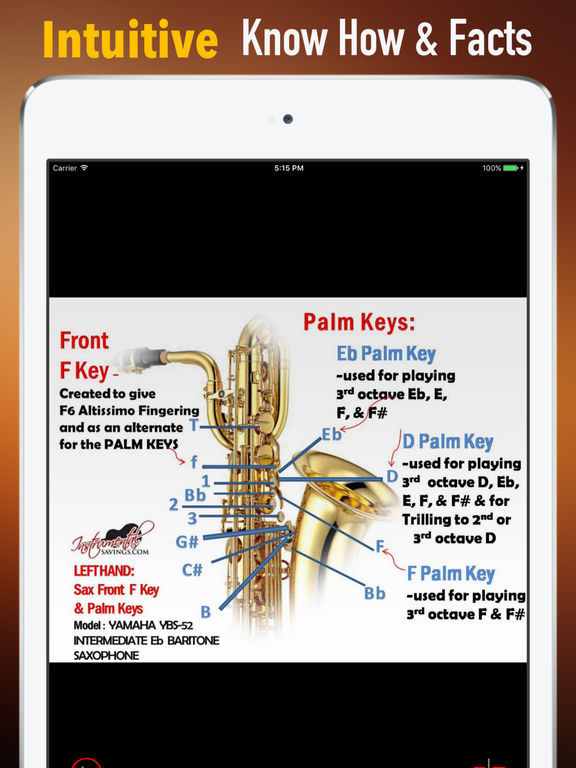 Self Learn Saxophone: Beginner Skills and Tutorial screenshot 5