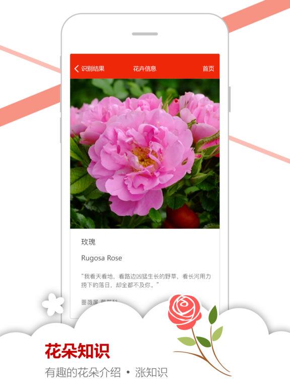 微软识花 screenshot 9