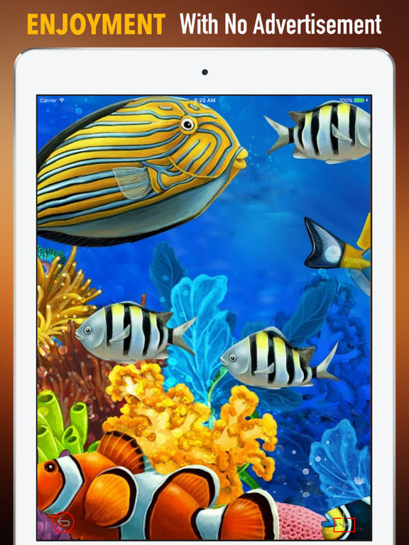Marine Life Wallpapers HD- Quotes and Art Picture screenshot 7